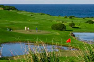 Golf Course at Gerringong